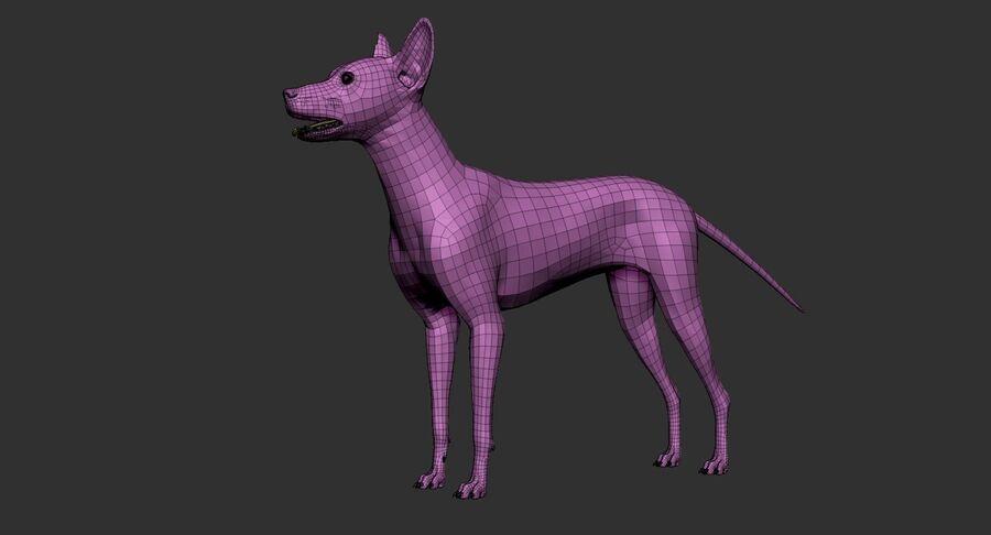 Meksikalı Tüysüz Köpek Anatomisi ve İskeleti royalty-free 3d model - Preview no. 24
