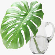 Monstera Leaf 3d model