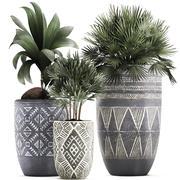 Çiçekler için saksılar dekoratif bitkileri 475 3d model