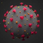Covid-19 Coronavirus SARS 3D模型 3d model