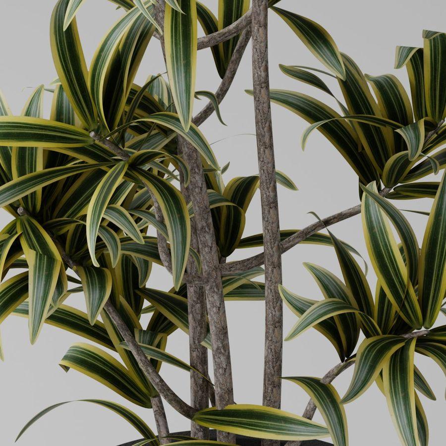 Kleine Pflanze royalty-free 3d model - Preview no. 3