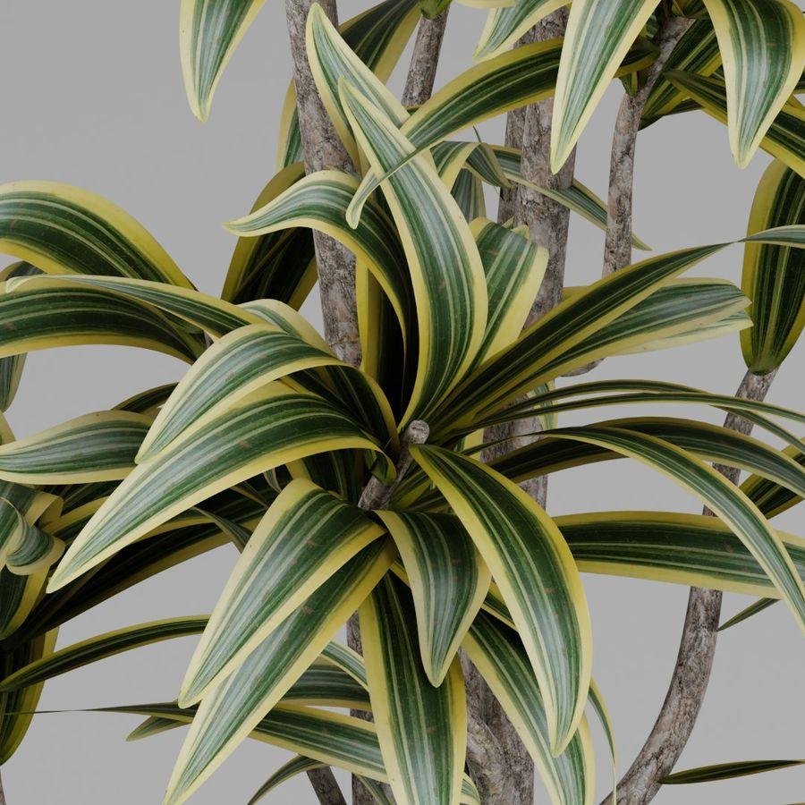 Kleine Pflanze royalty-free 3d model - Preview no. 4