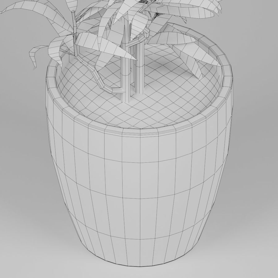 Small plant royalty-free 3d model - Preview no. 8