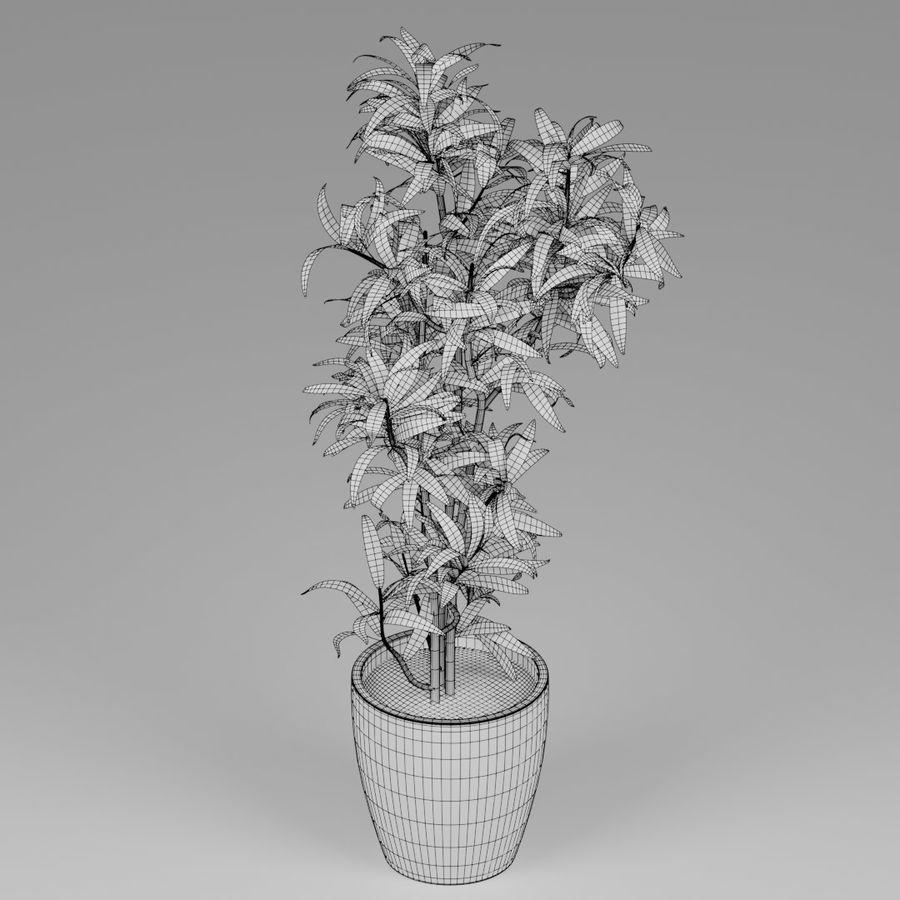 Petite plante royalty-free 3d model - Preview no. 6