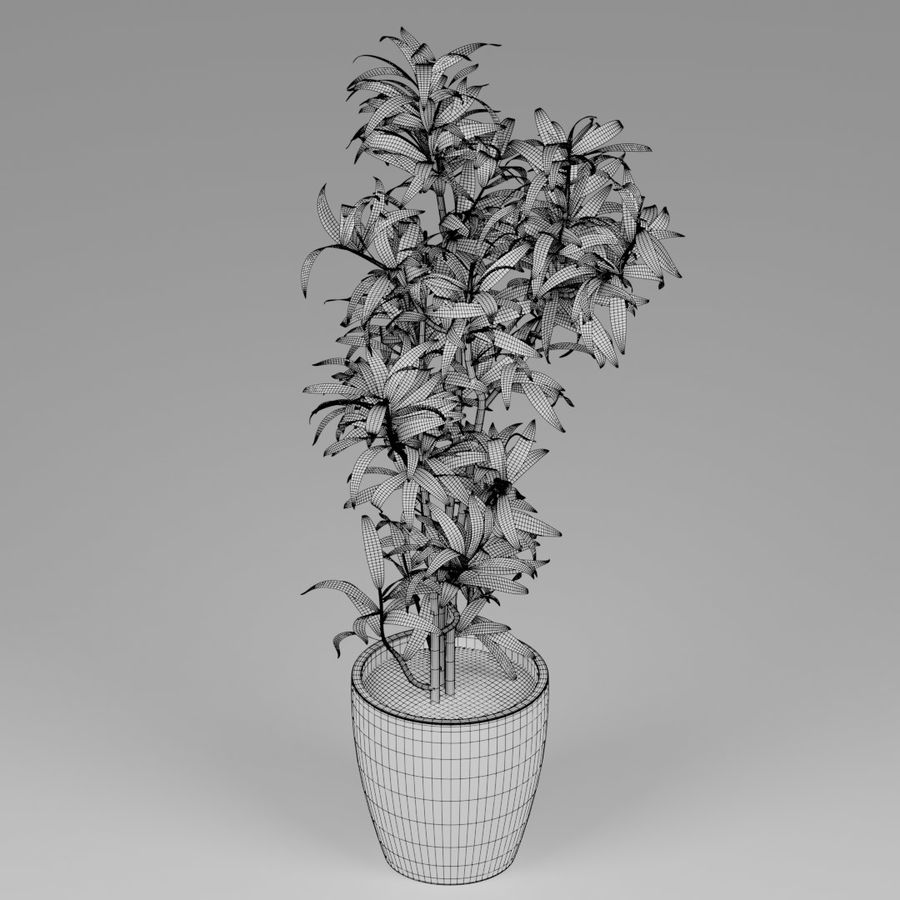Small plant royalty-free 3d model - Preview no. 7