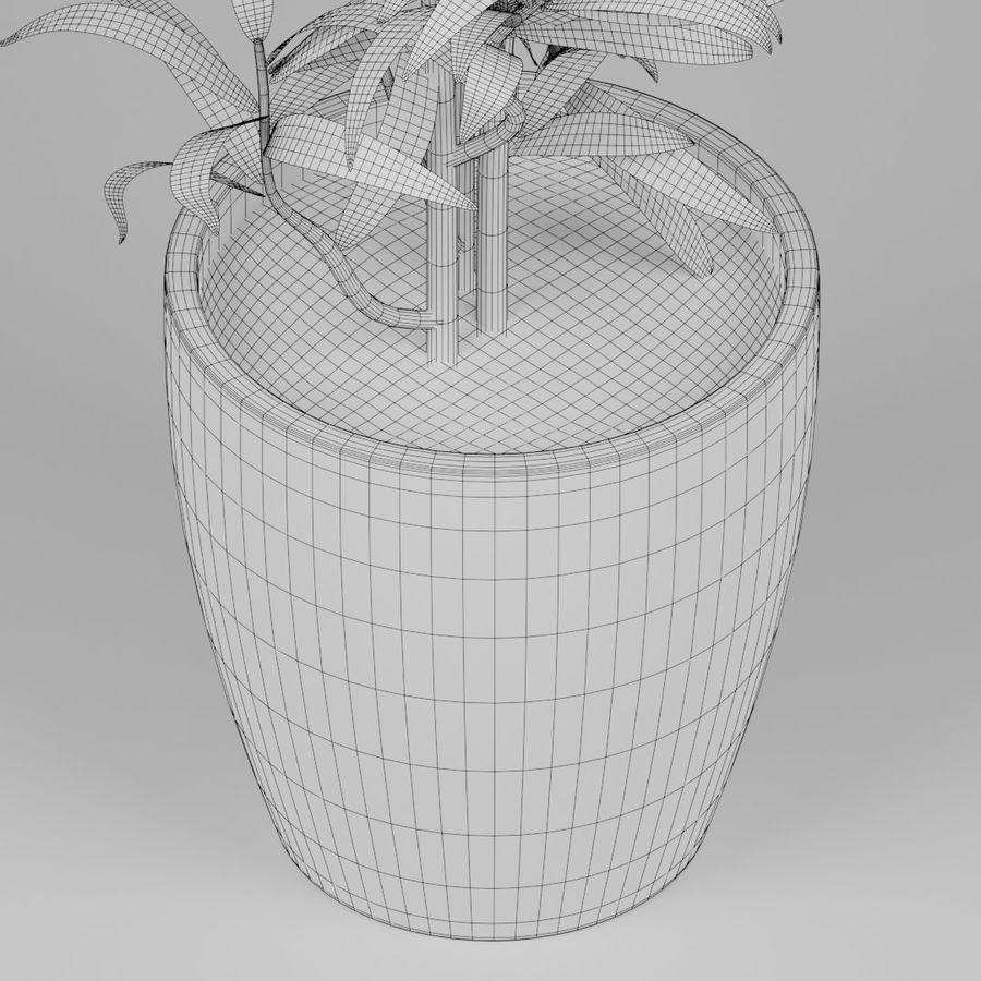 Kleine Pflanze royalty-free 3d model - Preview no. 10
