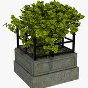 Classic Plant Pot Street 3d model