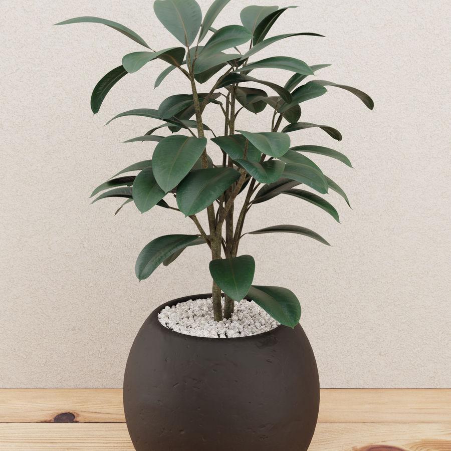 Home plant pot royalty-free 3d model - Preview no. 1