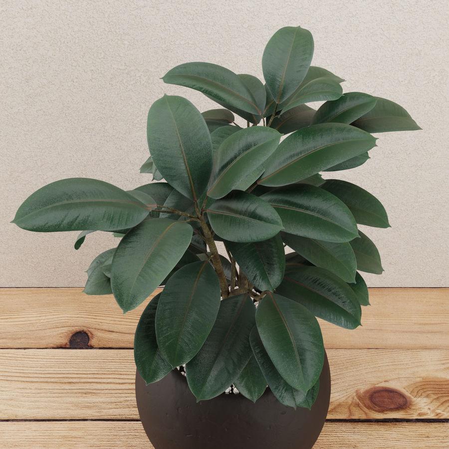 Home plant pot royalty-free 3d model - Preview no. 2