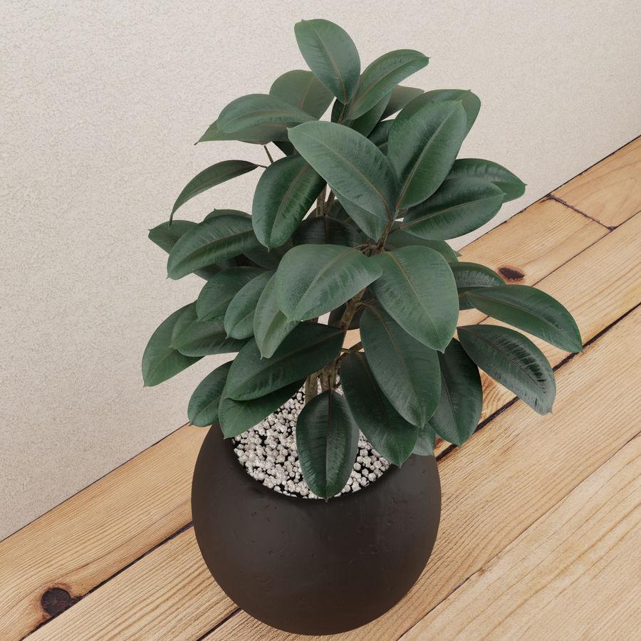 Home plant pot royalty-free 3d model - Preview no. 3