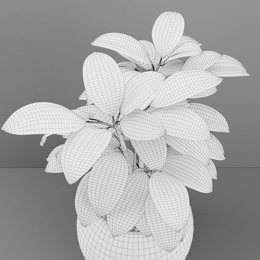 Home plant pot royalty-free 3d model - Preview no. 5