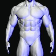 maglia di base 3d model