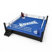 Зона бокса 2 3d model