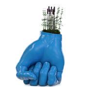 Hand Vase Plant 3d model