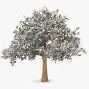 Money Tree with Dollar Bills 3d model