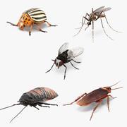 Kolekcja szkodników owadów 3d model