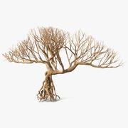 Bare Bonsai 3d model