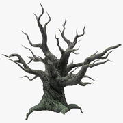 Spooky Old Twisted Tree 3d model