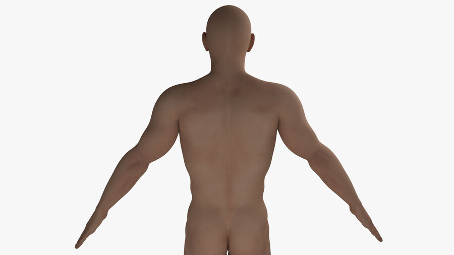 Bill Nude Man royalty-free 3d model - Preview no. 23