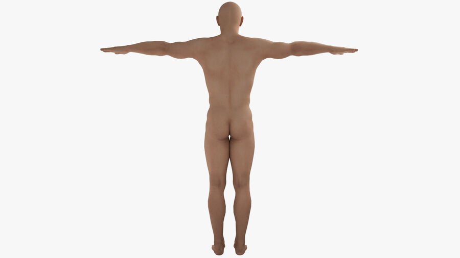 Bill Nude Man royalty-free 3d model - Preview no. 5