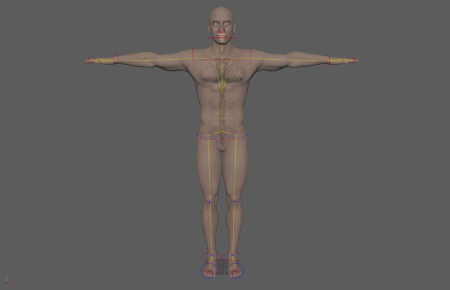 Bill Nude Man royalty-free 3d model - Preview no. 53