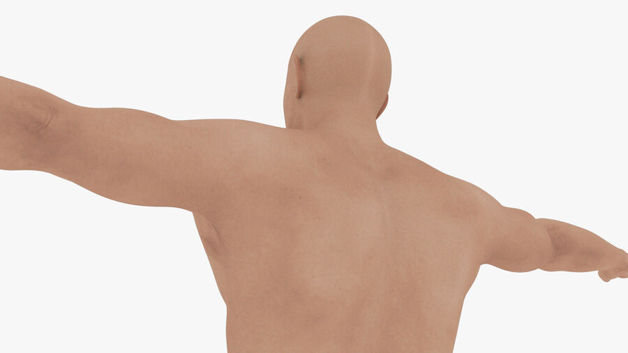 Bill Nude Man royalty-free 3d model - Preview no. 51