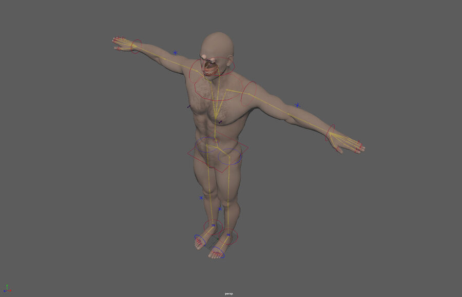 Bill Nude Man royalty-free 3d model - Preview no. 54