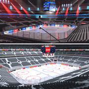 Hockey Arenas-collectie 3d model