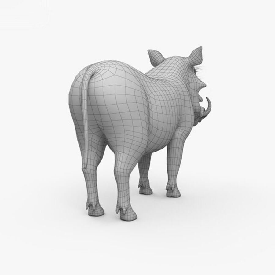 Phacochère HD royalty-free 3d model - Preview no. 16