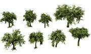 Träd låg poly-fantasi 3d model
