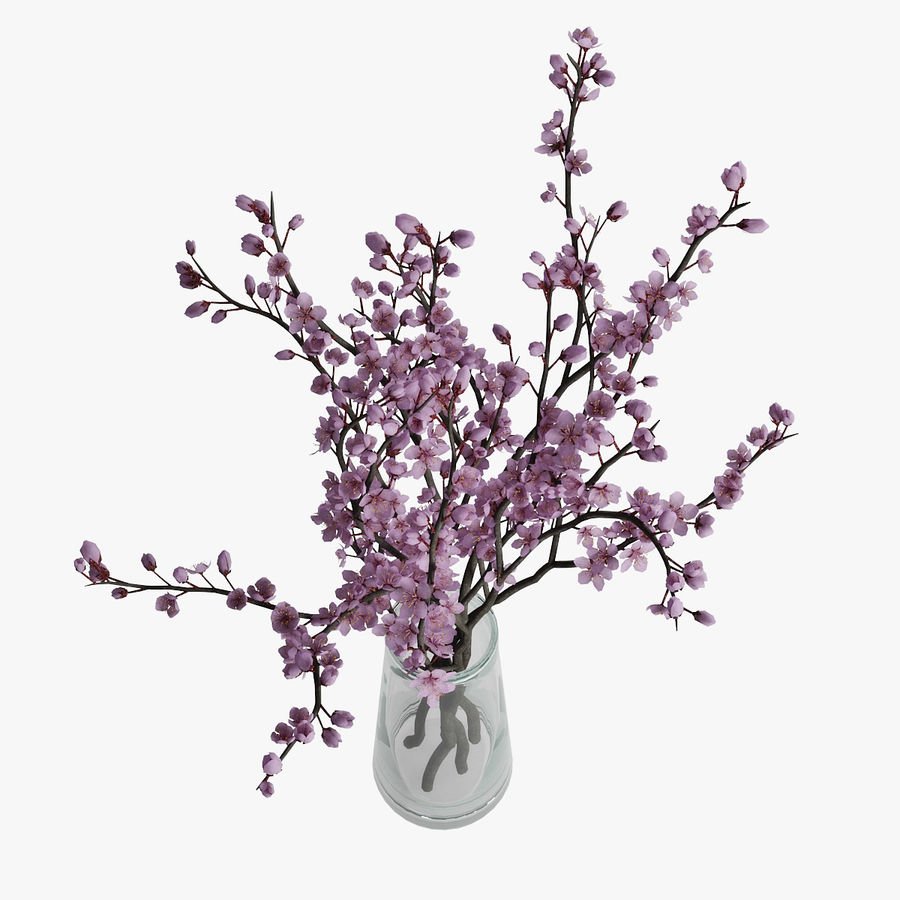 Plum blossom royalty-free 3d model - Preview no. 6