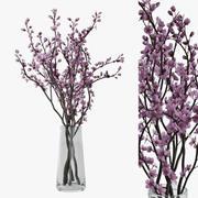 Цветение сливы 3d model