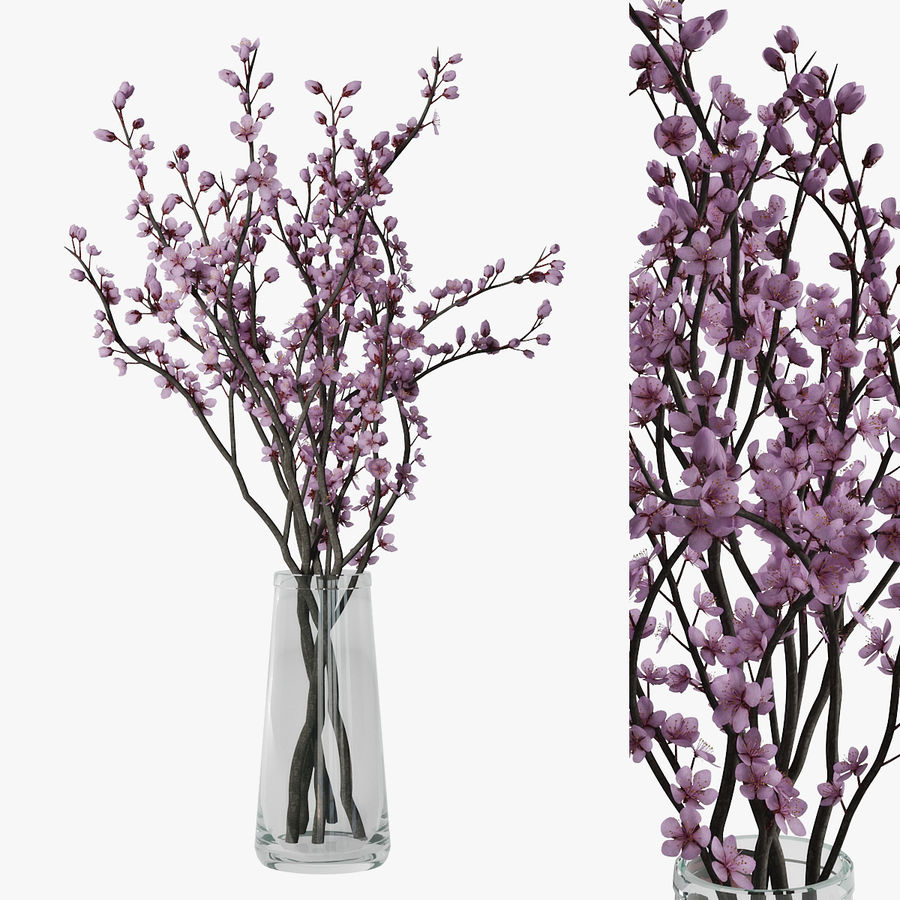 Plum blossom royalty-free 3d model - Preview no. 1