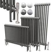 Horizontale radiator met 2 kolommen van Butler & Rose 3d model