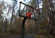 Cesta de basquete 3d model