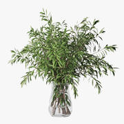 Olive branches 3d model