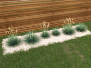 blue fescue Festuca glauca 3d model