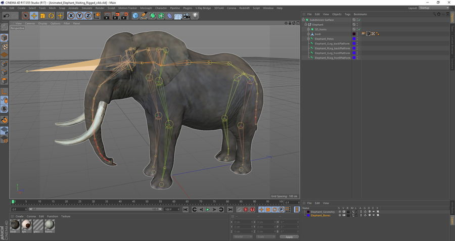 Animerad Elephant Waiting Rigged for Cinema 4D royalty-free 3d model - Preview no. 12