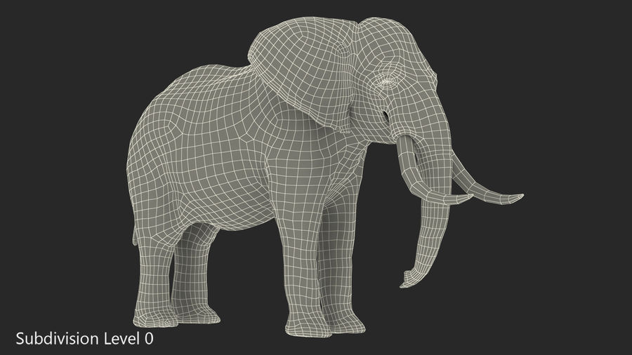 Animerad Elephant Waiting Rigged for Cinema 4D royalty-free 3d model - Preview no. 18