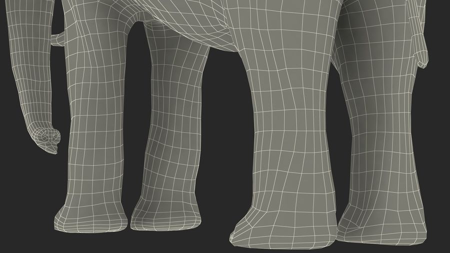 Animerad Elephant Waiting Rigged for Cinema 4D royalty-free 3d model - Preview no. 25
