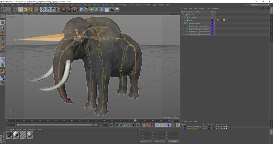 Animerad Elephant Waiting Rigged for Cinema 4D royalty-free 3d model - Preview no. 17