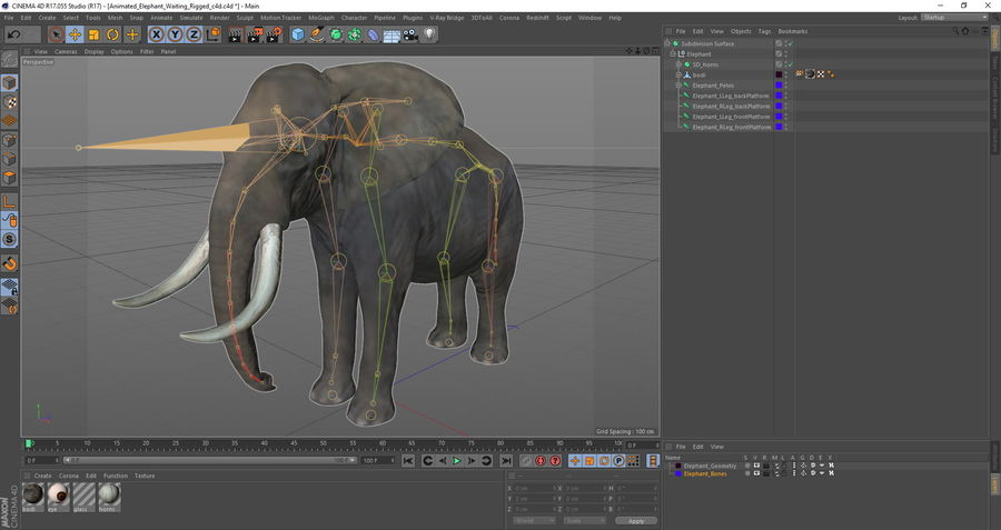 Animerad Elephant Waiting Rigged for Cinema 4D royalty-free 3d model - Preview no. 15