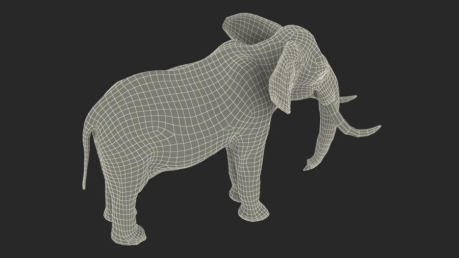 Animerad Elephant Waiting Rigged for Cinema 4D royalty-free 3d model - Preview no. 23