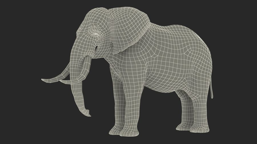 Animerad Elephant Waiting Rigged for Cinema 4D royalty-free 3d model - Preview no. 22
