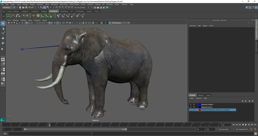 Animerad Elephant Waiting Rigged för Maya royalty-free 3d model - Preview no. 15