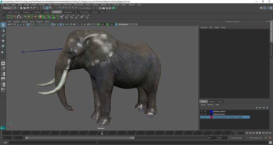 Animerad Elephant Waiting Rigged för Maya royalty-free 3d model - Preview no. 16