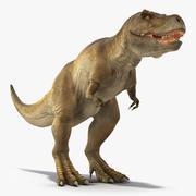 Animerad Tyrannosaurus Rex Waiting Rigged for Cinema 4D 3d model