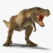 Cinema 4D için Donanımlı Animasyonlu Tyrannosaurus Rex Roaring 3d model