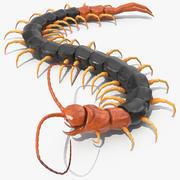 Giant Desert Centipede Rigged 3d model