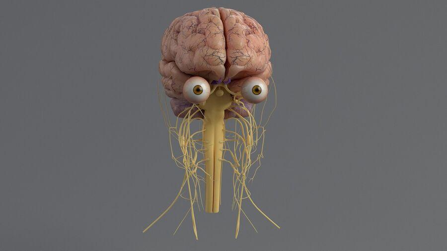 人間の頭の解剖学 royalty-free 3d model - Preview no. 28